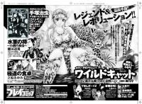 「プレイコミック2010vol05」次号予告/秋田書店