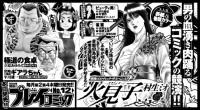 「プレイコミック2010vol12 新聞掲載用広告」/秋田書店